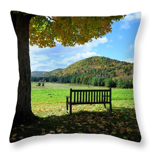 Fall Foliage Throw Pillow featuring the photograph Fall Plains by Tom Heeter