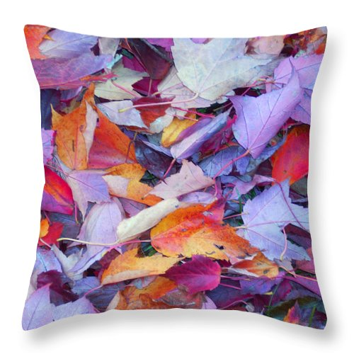 Throw Pillow featuring the photograph Fall Purples by Karin Dawn Kelshall- Best