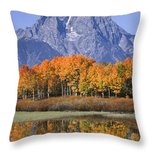 Grand Tetons Throw Pillow featuring the photograph Fall Reflection At Oxbow Bend by Sandra Bronstein