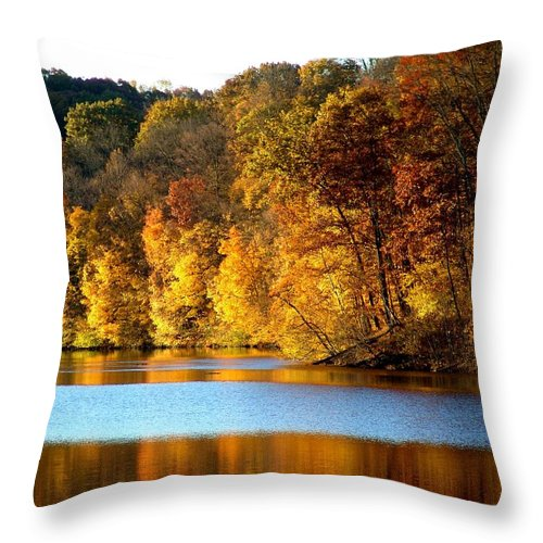 Trees Throw Pillow featuring the photograph Fall Reflections Of Indiana by Carol Milisen
