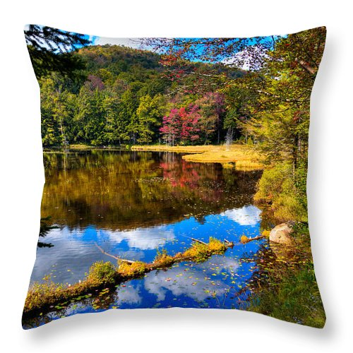 Fall Reflections On Cary Lake Throw Pillow featuring the photograph Fall Reflections On Cary Lake by David Patterson