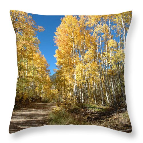 Landscape Throw Pillow featuring the photograph Fall Road by Jerry McElroy