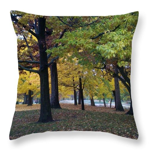 Fall Throw Pillow featuring the photograph Fall Series 14 by Anita Burgermeister