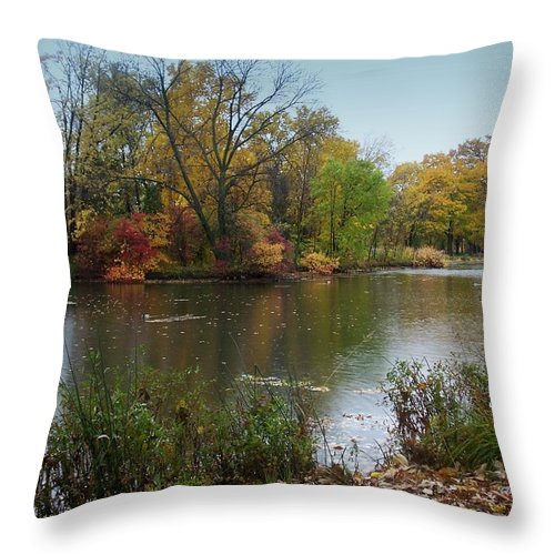 Fall Throw Pillow featuring the photograph Fall Series 8 by Anita Burgermeister