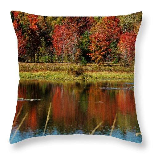 Autumn Throw Pillow featuring the photograph Fall Splendor by Linda Murphy