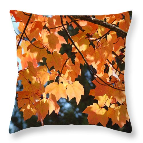 Landscape Throw Pillow featuring the photograph Fall Tree Art Prints Orange Autumn Leaves Baslee Troutman by Baslee Troutman