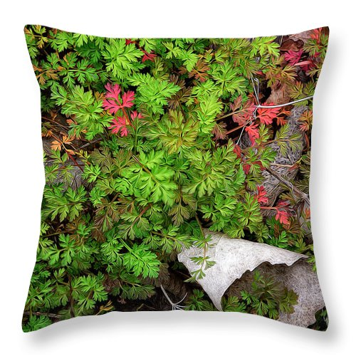 Leaves Throw Pillow featuring the photograph Fallen #2 by Patti Schulze