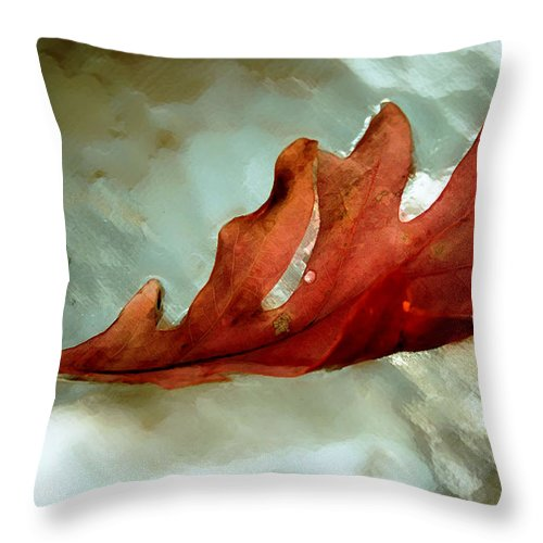 Nature Throw Pillow featuring the photograph Fallen Leaf by Linda Sannuti