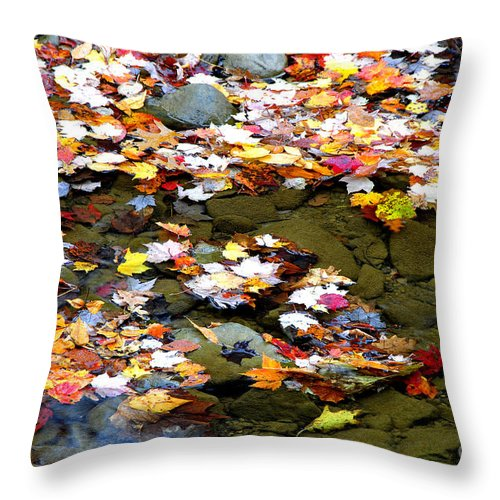 Autumn Throw Pillow featuring the photograph Fallen Leaves Birch River by Thomas R Fletcher