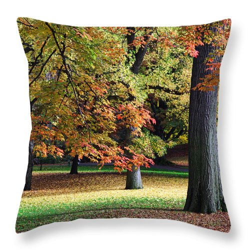 Autumn Throw Pillow featuring the photograph Fallen Leaves II by June Marie Sobrito