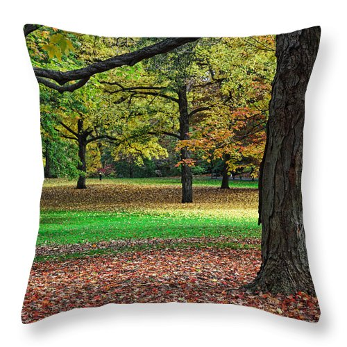 Autumn Throw Pillow featuring the photograph Fallen Leaves by June Marie Sobrito
