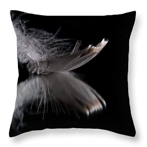 Macro Throw Pillow featuring the photograph Fallen Reflections 3 by Matt Hicks