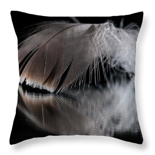 Macro Throw Pillow featuring the photograph Fallen Reflections 4 by Matt Hicks