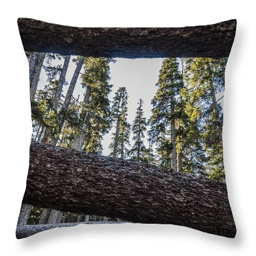 Fallen Trees Pacific Crest Trail Washington State Woods Trails Hiking Throw Pillow featuring the photograph Fallen Trees by Pelo Blanco Photo