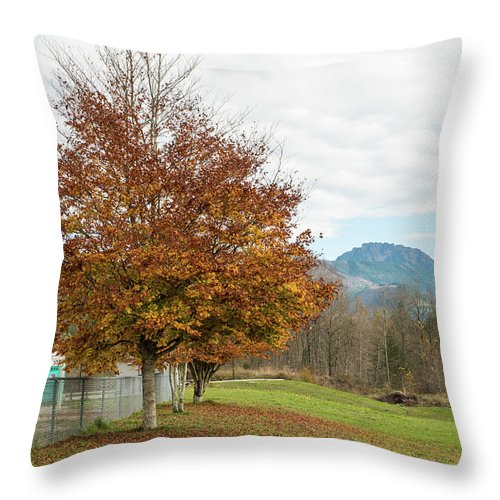 Falling Leaves In Silo Park Throw Pillow featuring the photograph Falling Leaves In Silo Park by Tom Cochran