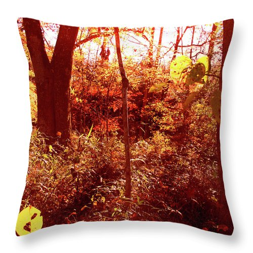 Leaves Throw Pillow featuring the photograph Falling Leaves by Nina Fosdick