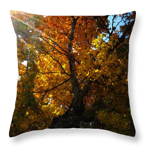 Art Throw Pillow featuring the painting Falling Light by David Lee Thompson
