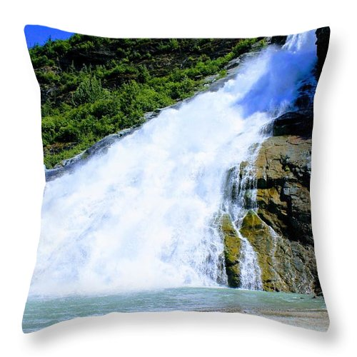 Throw Pillow featuring the photograph Falls by Jack Ecke