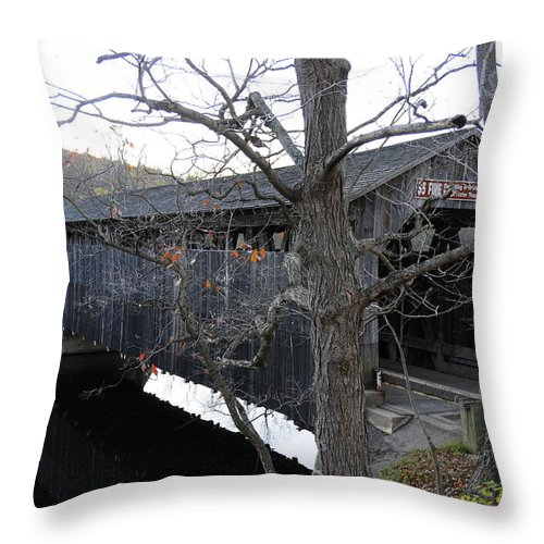 Bridge Throw Pillow featuring the photograph Fallsburg by David Arment