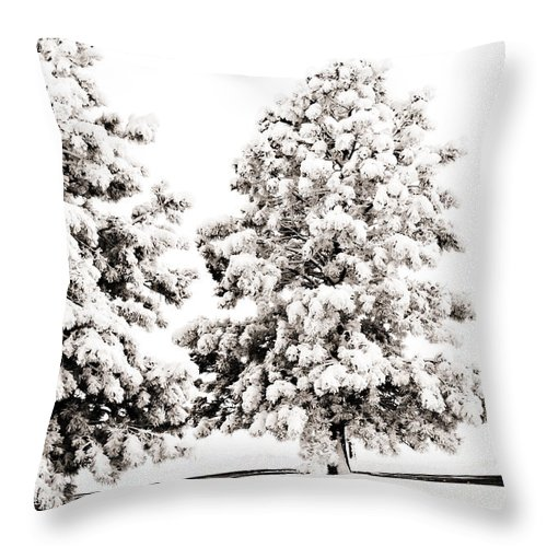 Trees Throw Pillow featuring the photograph Family Of Trees by Marilyn Hunt