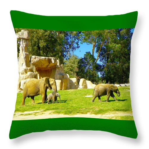 Animals Throw Pillow featuring the photograph Family Time by Barbara Zahno