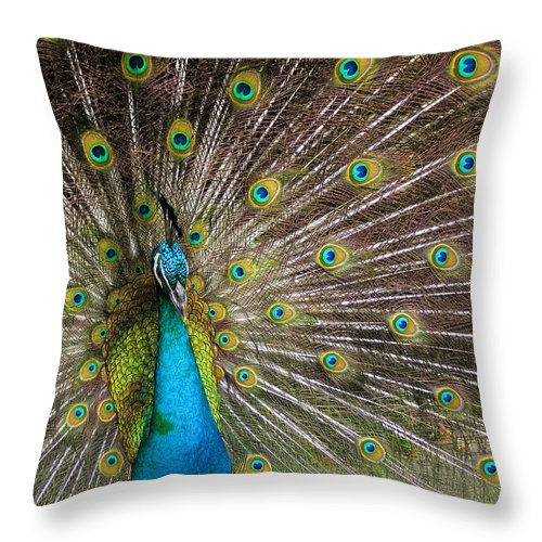 Avian Throw Pillow featuring the photograph Fanfare by Alana Thrower