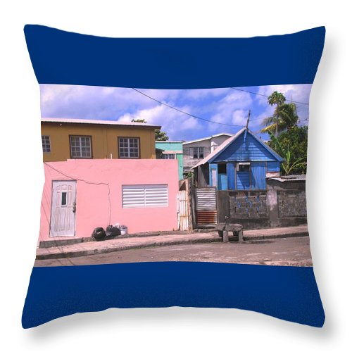 Basseterre Throw Pillow featuring the photograph Far From Dull by Ian MacDonald
