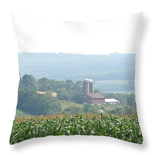 Misty Farm Scene Throw Pillow featuring the photograph Farm Country by Penny Neimiller