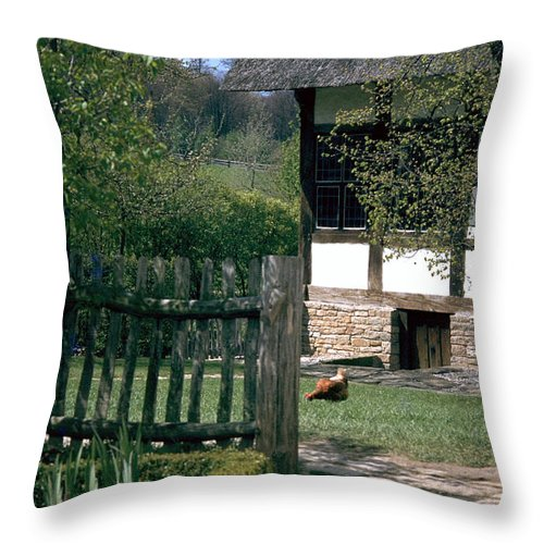 German Throw Pillow featuring the photograph Farm by Flavia Westerwelle