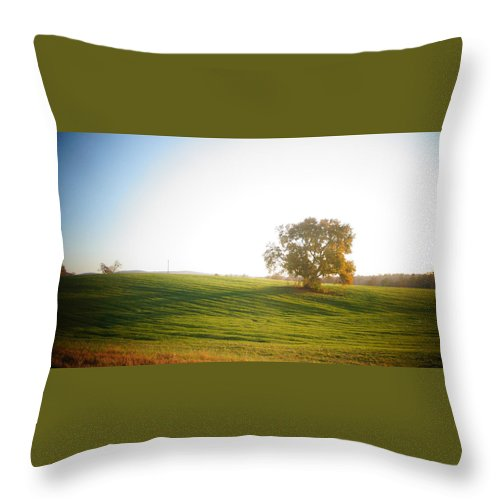 Nature Throw Pillow featuring the photograph Farm by Keegan Hall