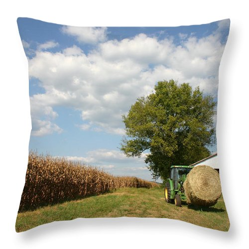 Farm Throw Pillow featuring the photograph Farm Life by Patricia Montgomery