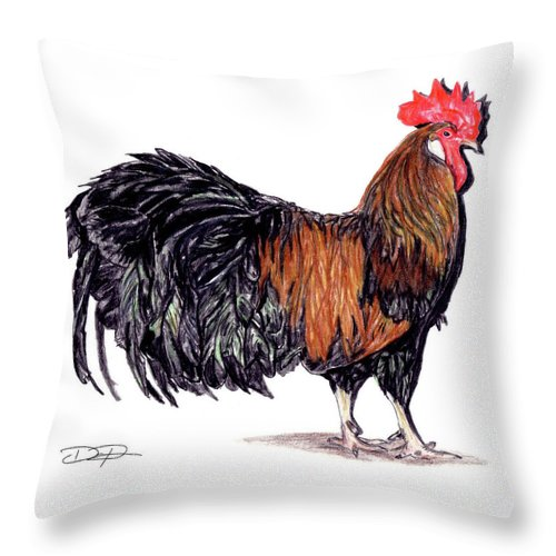 Rooster Throw Pillow featuring the drawing Farm Rooster by Dan Pearce
