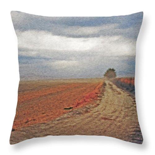 Farmland Throw Pillow featuring the photograph Farmland 3 by Steve Ohlsen
