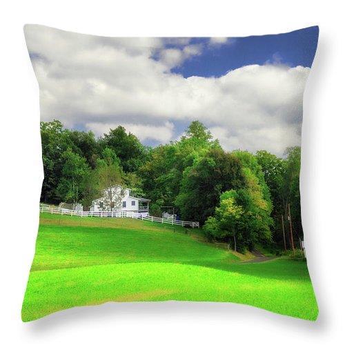 Landscape Throw Pillow featuring the photograph Farmland by Tom Mc Nemar
