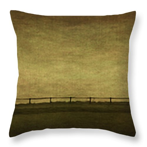 Landscape Throw Pillow featuring the photograph Farscape by Evelina Kremsdorf