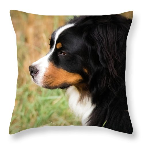 2015 Throw Pillow featuring the photograph Farwell To Cousin And Friend by Cary Leppert