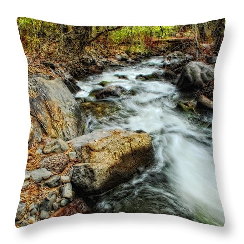 Creek Throw Pillow featuring the photograph Fast Forward by Donna Blackhall