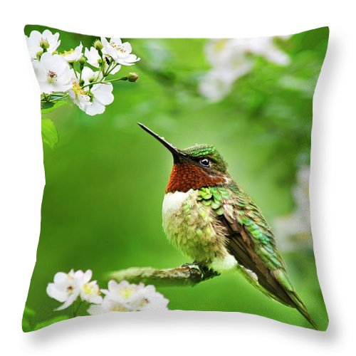 Hummingbird Throw Pillow featuring the photograph Fauna And Flora - Hummingbird With Flowers by Christina Rollo