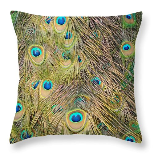 Peacock Throw Pillow featuring the photograph Feather Finesse by Margaret Bobb