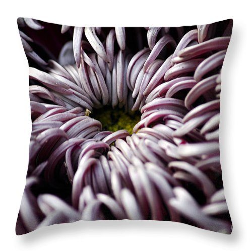 Clay Throw Pillow featuring the photograph Feed Me by Clayton Bruster