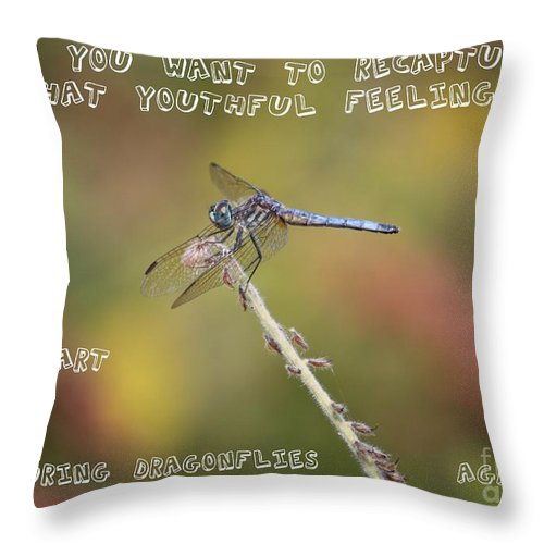 Dragonfly Art Throw Pillow featuring the photograph Feel Young Again by Carol Groenen