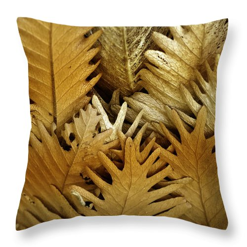 Florals Throw Pillow featuring the photograph Feeling Nature by Holly Kempe