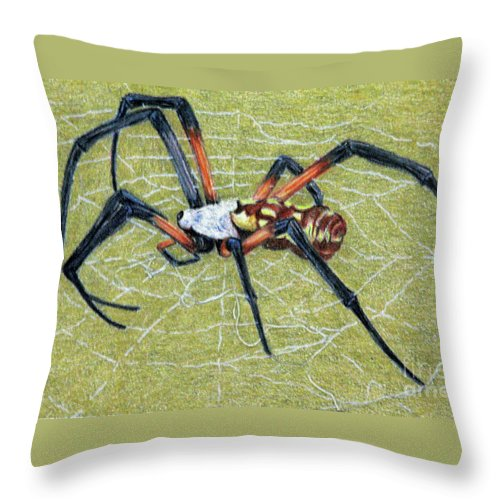 Fuqua - Artwork Throw Pillow featuring the drawing Female Orb Spider -1 by Beverly Fuqua