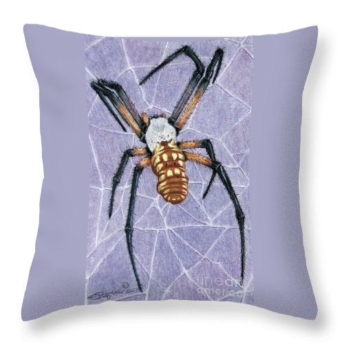 Fuqua - Artwork Throw Pillow featuring the drawing Female Orb Spider by Beverly Fuqua