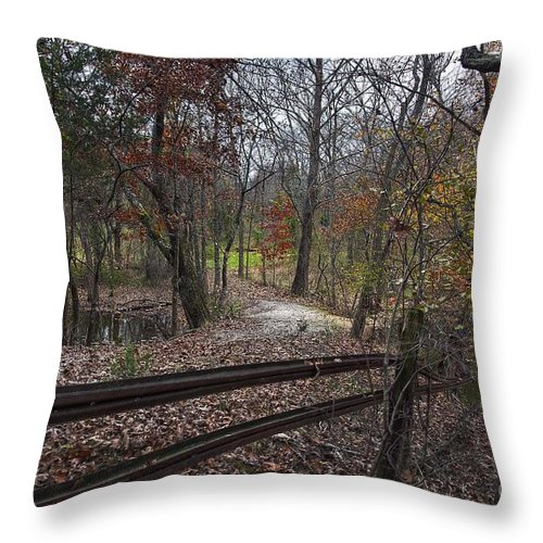 2013 Throw Pillow featuring the photograph Fence In The Forrest by Larry Braun