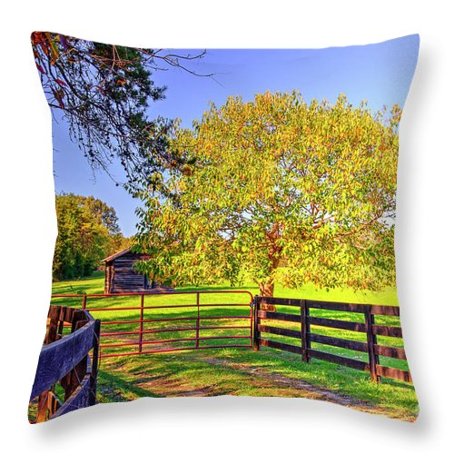 Fence Throw Pillow featuring the photograph Fence Pasture And Barn 1721 by Doug Berry