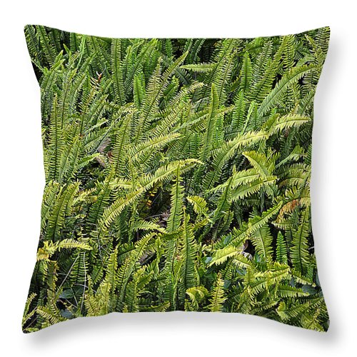Clay Throw Pillow featuring the photograph Fern by Clayton Bruster