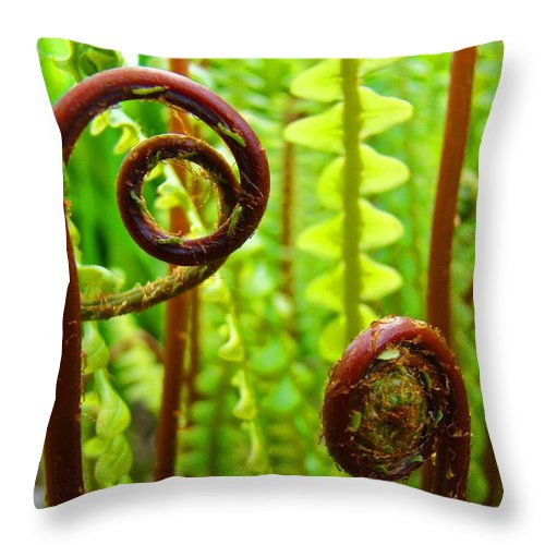 Fern Throw Pillow featuring the photograph Fern Fronds Fine Art Photography Forest Ferns Green Baslee Troutman by Baslee Troutman