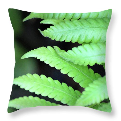 Ferns Throw Pillow featuring the photograph Fern Tips - Digital Painting by Carol Groenen
