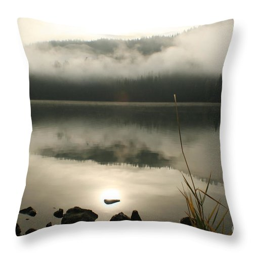 Mist Throw Pillow featuring the photograph Fernan Fog by Idaho Scenic Images Linda Lantzy
